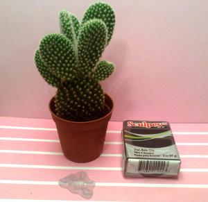 Qué hacer con un cactus, un paquete de fimo y un sello: tutorial maceta
